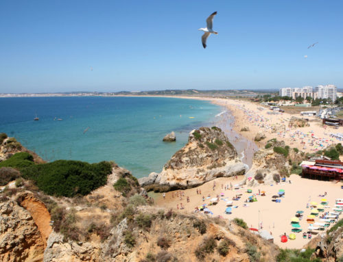 Algarve presentation